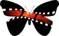 Monarch Film Festival Butterfly
