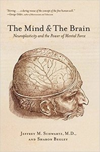 Jeffery Schwartz The Mind and the Brain